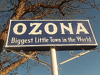Ozona Texas Real Estate