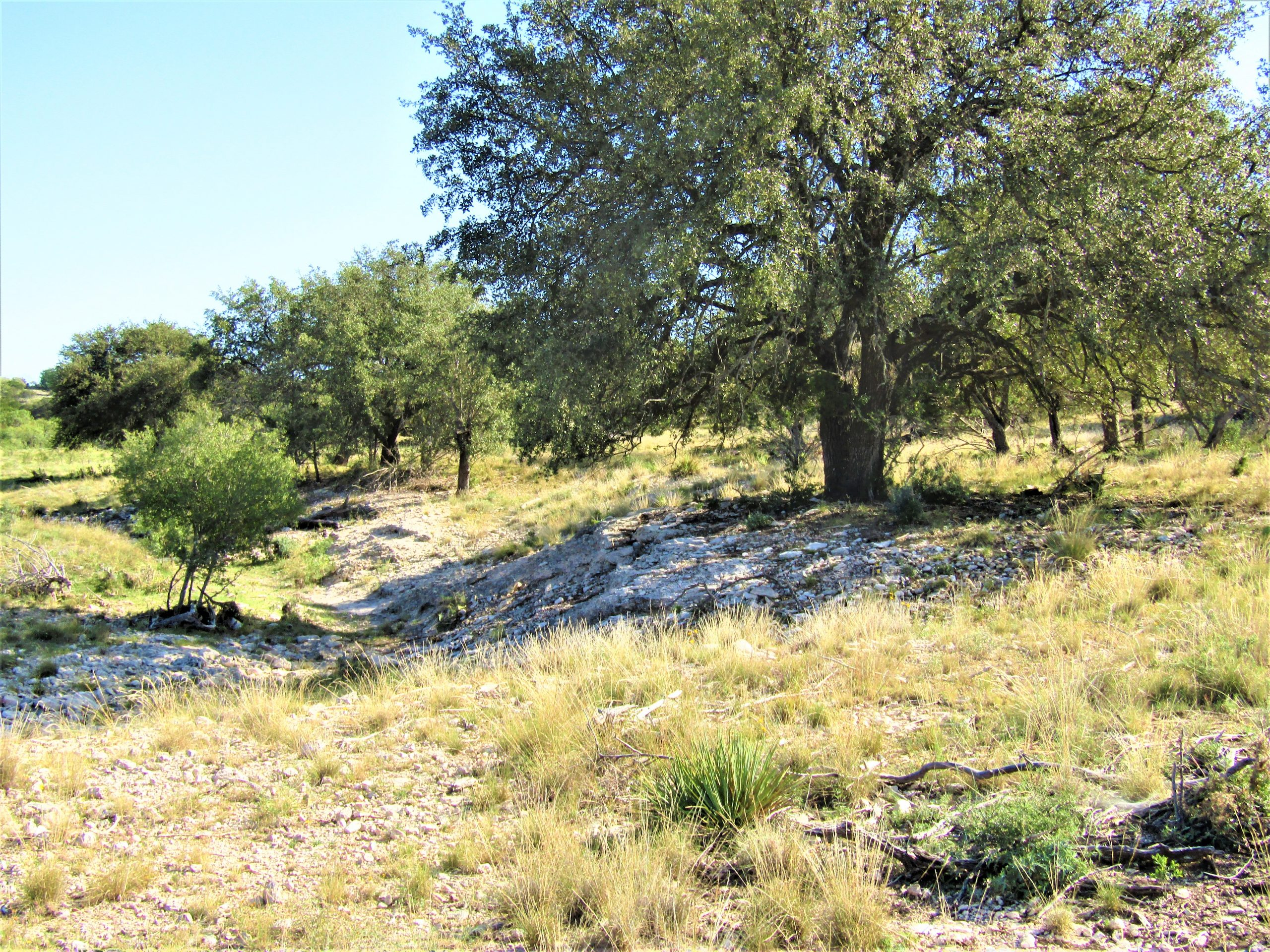 61 – 75 Acre Tracts – Sonora, Texas